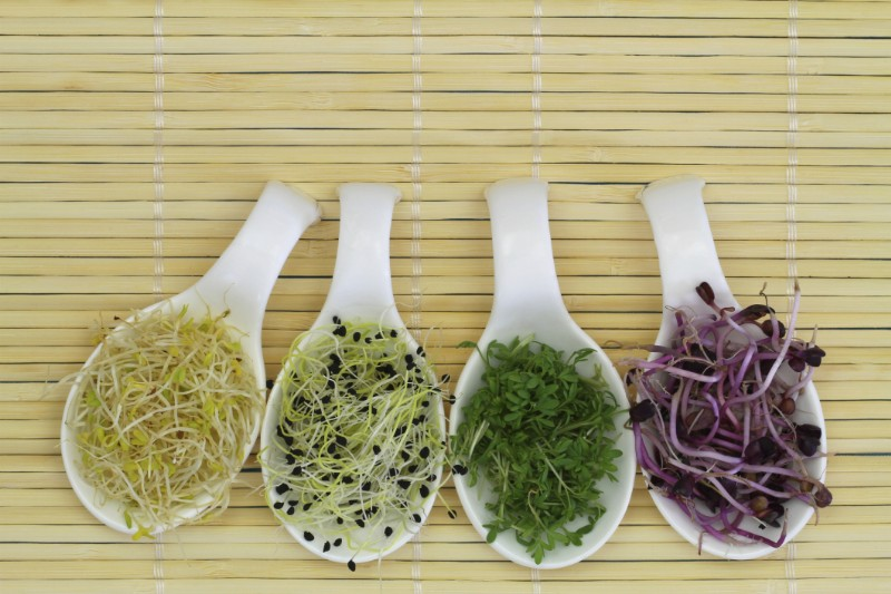 cucina-macrobiotica_800x533